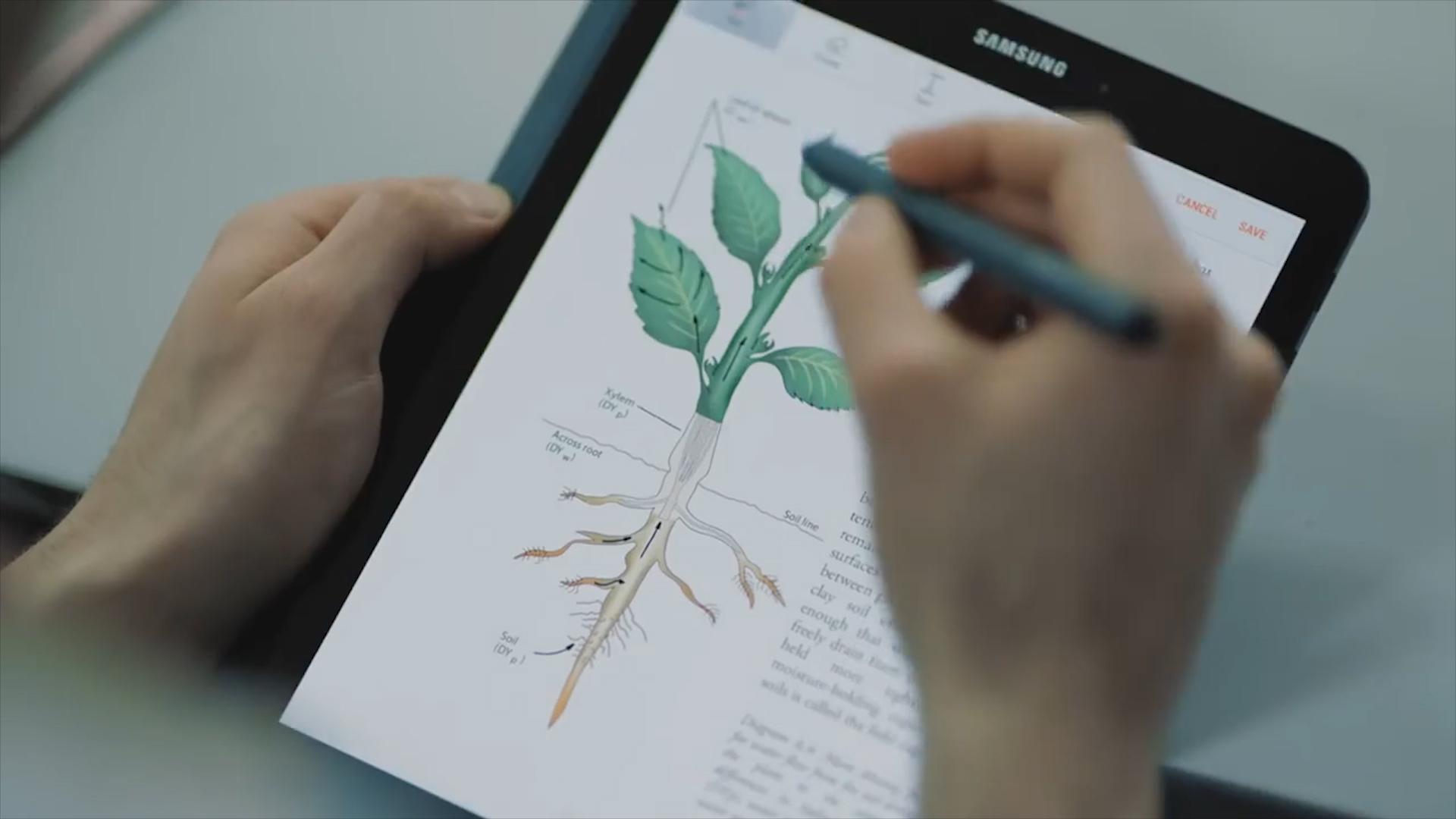 Samsung Galaxy Tab S4 Video - Square Elephant Productions